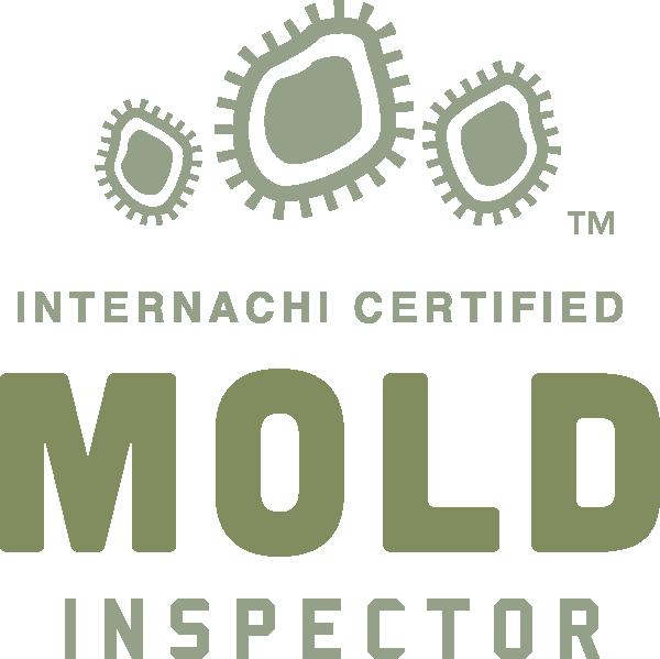 West Palm Beach mold inspection near me